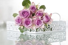 Purple Roses Bouquet Royalty Free Stock Photos