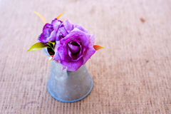 Purple roses in zinc vase Royalty Free Stock Photos