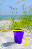 Purple Sand Bucket on Dune Stock Photo