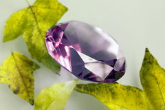 Purple sapphire. With leaves in fall Royalty Free Stock Photography