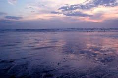 Purple sea Stock Images