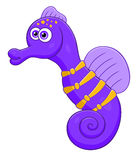 Purple sea horse Stock Photos