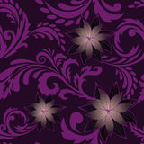 Purple seamless background with flowers Stock Image