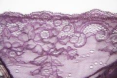 Purple sexy lace Stock Image