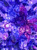 Purple shimmering Christmas Decorations. Christmas tree decorations in purple shimmering flowers and bows stock image