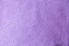 Purple skin texture. royalty free stock photos
