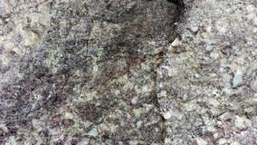 Purple Slate and Quartzite Boulder. A detailed piece of a purple slate and quartzite boulder royalty free stock photos