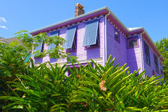Purple southern house. This Uptown New Orleans home, surrounded by ginger plants, with window shutters is known as a painted lady: a house painted with five or Royalty Free Stock Photography