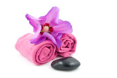 Purple spa accessory Royalty Free Stock Photos