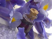 Purple spa arrangement Royalty Free Stock Photo