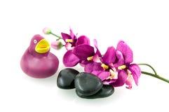 Purple spa set. Spa set isolated on white background royalty free stock images