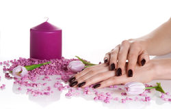 Purple spa treatment for hands Royalty Free Stock Photo