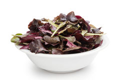 Purple spinach leaves in bowl Stock Photo