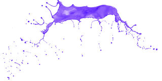 Purple splash isolated. On white background Royalty Free Stock Photography