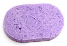 Purple Sponge Stock Photos