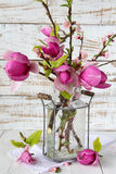 Spring blossom in glass vase Royalty Free Stock Photo