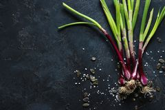Purple spring onions on dark table background. Top view Royalty Free Stock Photo