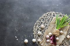 Purple spring onions on dark table background. Top view Stock Images