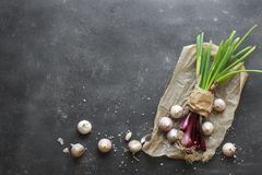 Purple spring onions on dark table background. Top view Royalty Free Stock Photos