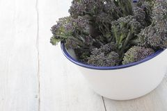 Purple sprouting broccoli Royalty Free Stock Images