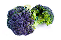 Purple sprouting Brocolli. Fresh purple sprouting broccoli isolated on white stock photo