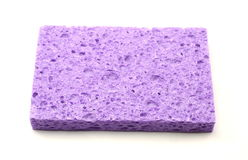 A purple square sponge Stock Images