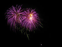 Purple Squiggly Fireworks, Black Sky Stock Photography
