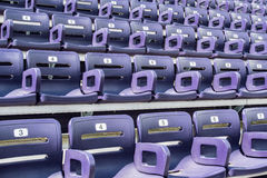 Purple Stadium Seats Angle View Royalty Free Stock Photography