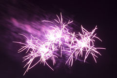 Purple star fireworks. Wonderful violet shining stars on a black night background Royalty Free Stock Images