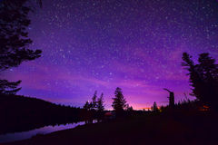 Purple Stary Night Sky Over Forest and Lake Stock Images