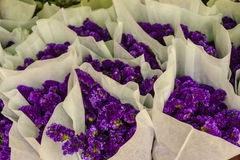 Purple statice flowers for sale in the flower market, Bangkok, T Royalty Free Stock Photography