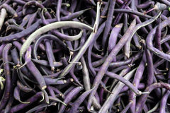 Purple string beans. An abundance of purple string beans at the farmer's market Royalty Free Stock Photography