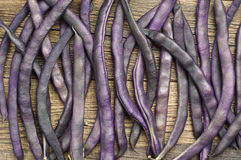 Purple string beans. Background with purple string beans Royalty Free Stock Image