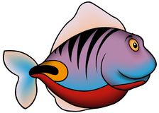 Purple Striped Fish Royalty Free Stock Image