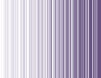 Purple Stripes Royalty Free Stock Image