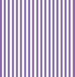 Purple Stripes Stock Photography