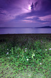Purple sunrise, seaside Royalty Free Stock Images