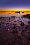 Purple sunset Stock Image