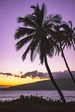 Purple Sunset with Ocean and Mountain in Maui Hawaii royalty free stock photography