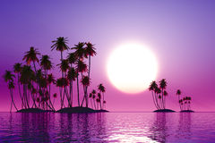 Purple sunset. Over coconut tropic islands royalty free illustration