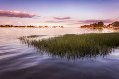 Purple Sunset Over Grassy Harbor Royalty Free Stock Images