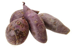 Purple sweet potato Royalty Free Stock Images