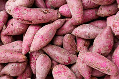 Purple Sweet Potato Stock Photos