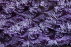 Purple swirl fur background Royalty Free Stock Photography