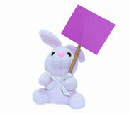 Purple tag. A stuffed bonny carrying a tag Stock Photography