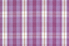 Purple tartan. Stock Photography