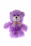 Purple teddy bear Stock Photos