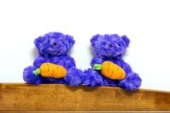 Purple Teddy Bear Stock Images