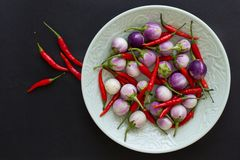Purple Thai eggplants and hot chili peppers on a green plate and nearby on a black background. Asian food stock photo