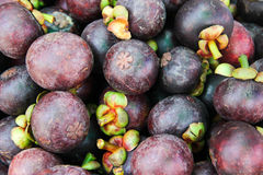 PURPLE THAILAND FRUIT Stock Photography
